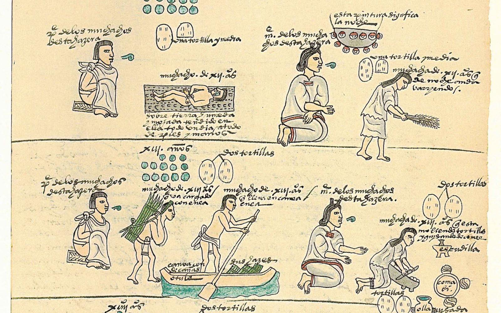 Les Codex de Florence et de Mendoza nous racontent la vie des Aztèques